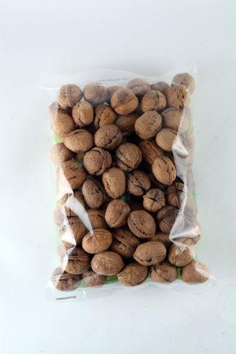 in-shell-walnuts