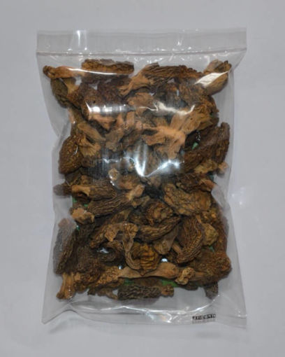 Morels-with-tail