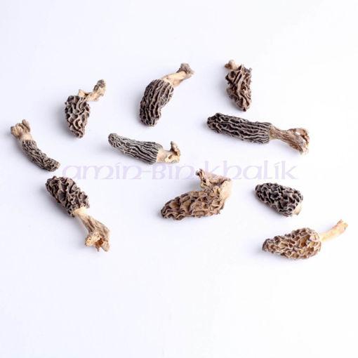 fifty grams of guchhi mushroom